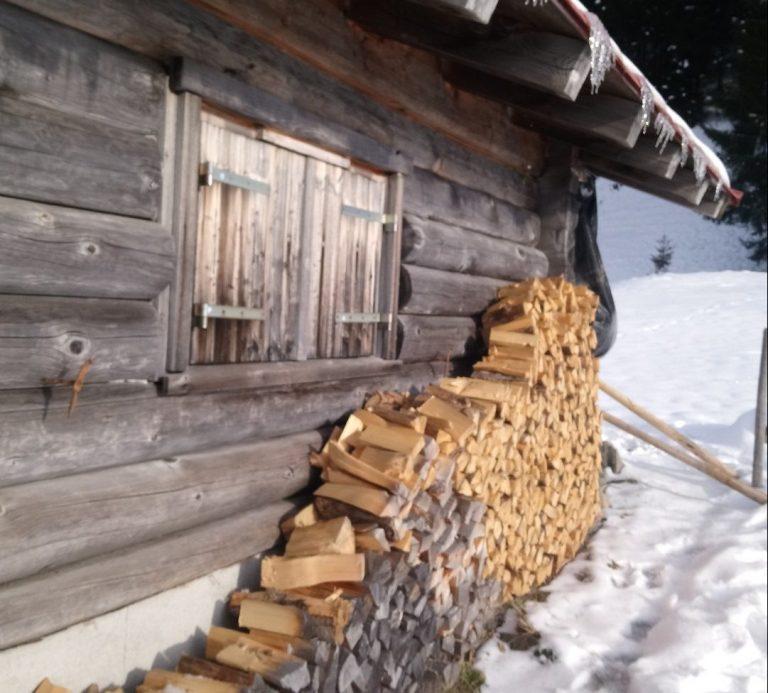 Winter-Holz